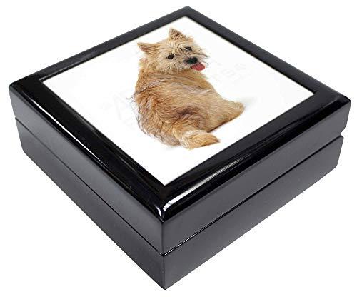 Advanta - Jewellery Boxes Cairn Terrier Hund Andenken/Schmuck Box Weihnachten Geschenk -