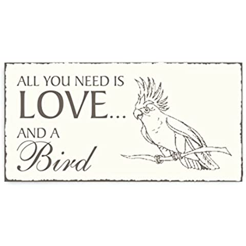 Targhetta decorativa Parrocchetto « All You Need Is Love and a bird » Targa in legno Targa fuori porta decorazione uccelli ornitologo Zoo animale