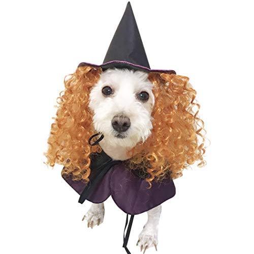 T-Shirt Vest Halloween Hund Kostüm Set, Lustiger Hund Kostüm Umhang Hund Cosplay enthält Hut Umhang Cute Dog Kostüm Pet Kostüm Set Large Muster (Cute Dog Kostüm Muster)
