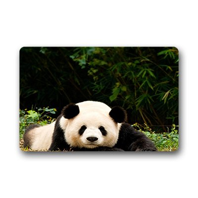 Dalliy panda china Fu?matten Doormat Outdoor Indoor 23.6