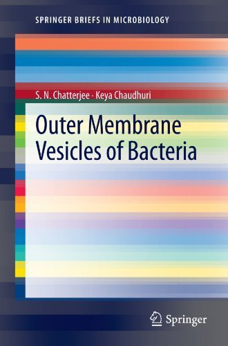 Outer Membrane Vesicles of Bacteria (SpringerBriefs in Microbiology) by S.N. Chatterjee (2012-08-11)