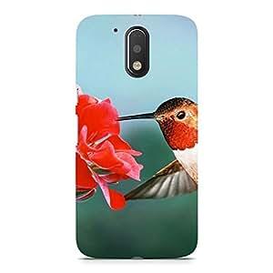 Hamee Printed Premium Hard Back Case Cover for Motorola Moto X Force Design 7645