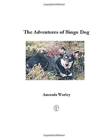 The Adventures of Bingo Dog