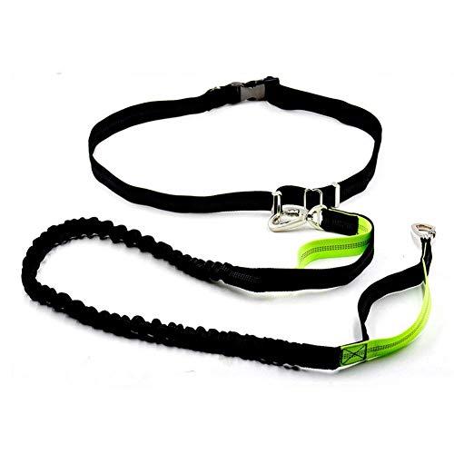Correa perro manos libres reflectante ajustable cintura
