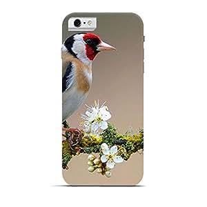 Hamee Designer Printed Hard Back Case Cover for Apple iPhone 6 / 6s Design 7611