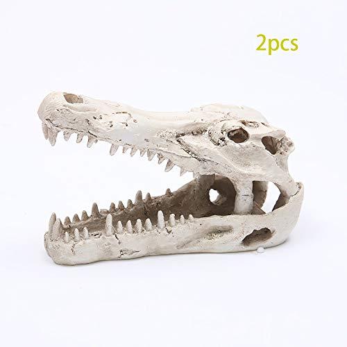 ZHZX Krokodil-Schädel, dauerhafte Aquarium-Dekoration, Kunstwerk-Kunstharz-Skulptur-Fotografie-Requisiten, Hauptverzierungs-Lehrwerkzeug, 2PCS