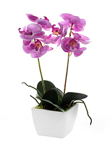 CB las importaciones 33 cm Mini Artificial orquídea en maceta, color rosa
