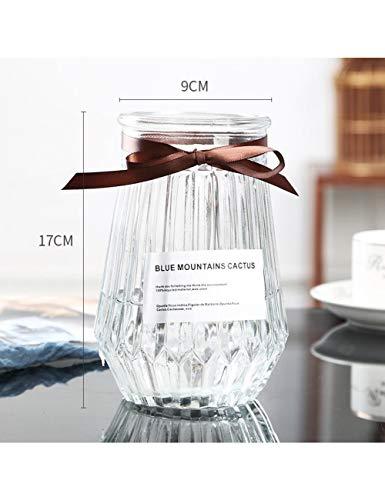 PENFJ Vase Glasvase Einfache Kreative Verzierungen Wohnzimmer Transparent Blumenschmuck Blume Trockenblumenbehälter, Orange (Rosa Und Orange Verzierungen)
