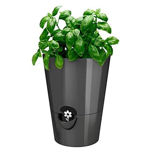 Emsa FRESH HERBS Pot à herbes fraîches, avec système d'irrigation, Ø 13 cm, granit