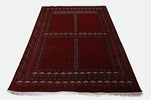 Pink City Souvenirs Handmade handgeknüpfter indischer traditioneller Teppich 6x9 Fuß (180x270 cm) rote Wolle Parda Design. ...