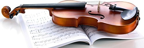 Music Violin Wall Poster Print Poster on 13x19 Inches  available at amazon for Rs.199