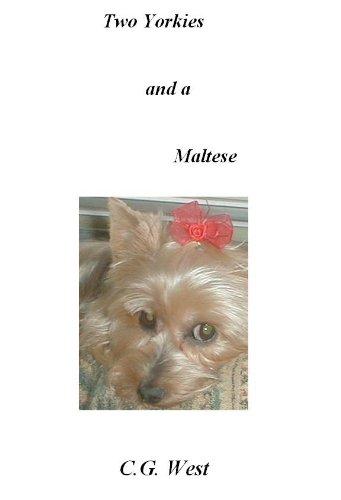 Two Yorkies and a Maltese (English Edition)