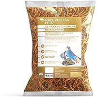Natureflow 2kg Mehlwürmer getrocknet für Kleintiere und Wildvögel - Premium Einzelfuttermittel für Fische und Reptilien