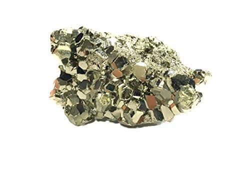 La conchiglia - pietre burattate sfuse grezze - pietre dure singole - cristalloterapia - energia positiva - minerali tascabili (pirite)