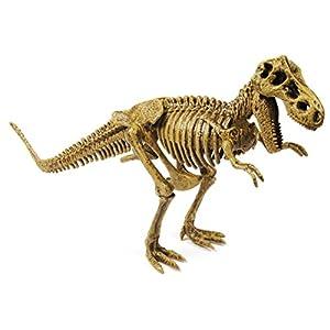 Cazadores Dr. Steve CL1500K - Paleo Expedición Kit Dino Dig: Modelo Tyrannosaurus Rex