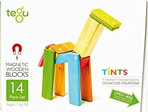 Tegu Juego de Bloques de Construcción de madera magnéticos de 14 piezas - Tintes