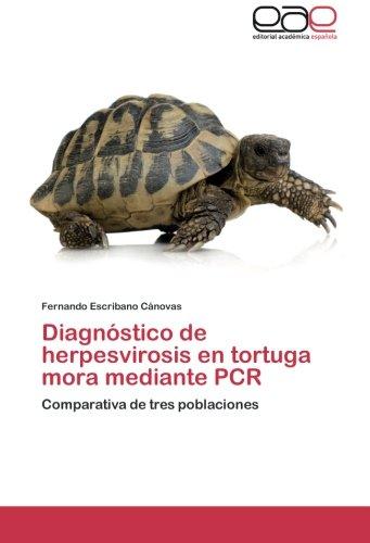 Diagnostico de Herpesvirosis En Tortuga Mora Mediante PCR por Escribano Canovas Fernando