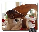 Gaming-Mauspads, Mäusematte, niedliche Hund Indoor Jungtiere inländischen Haustier