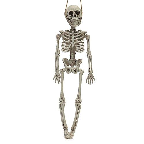 ZYCkeji Schön Halloween Skeleton Party Dekoration Skelett Horrid Scare Szene Simulation Menschlichen Körper Spielzeug Requisiten