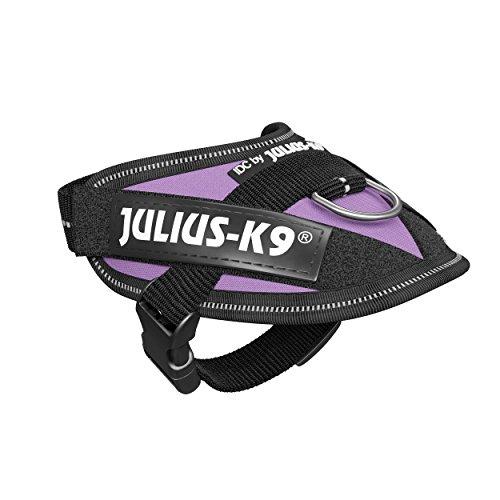 Julius-K9 16IDC-PR-B2 IDC Power Harness, Tamaño Baby 2, Púrpura