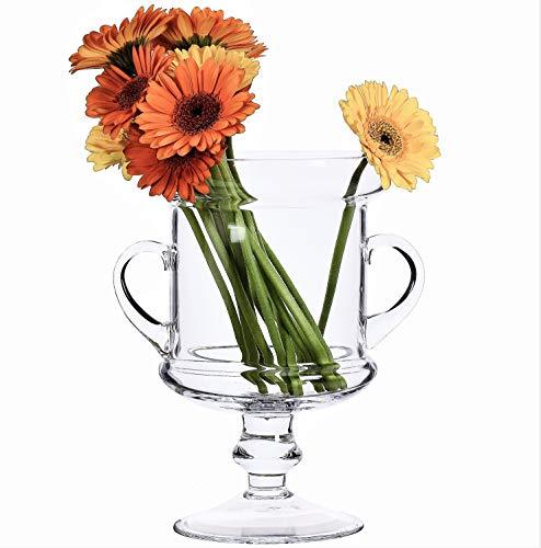 Arrangement de verre transparent Table Vase Trophy et poignées 24.5 cm
