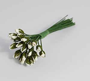 Habico - 3 mazzi da 2 dozzine di mini rose di carta, colore bianco