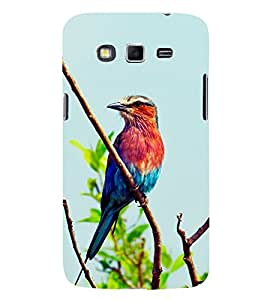 Colourful Sparrow 3D Hard Polycarbonate Designer Back Case Cover for Samsung Galaxy Grand 2 :: Samsung Galaxy Grand 2 G7105 :: Samsung Galaxy Grand 2 G7102