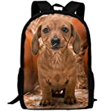 HOJJP HandtascheMost Durable Lightweight Cool Kids Backpack - Dog