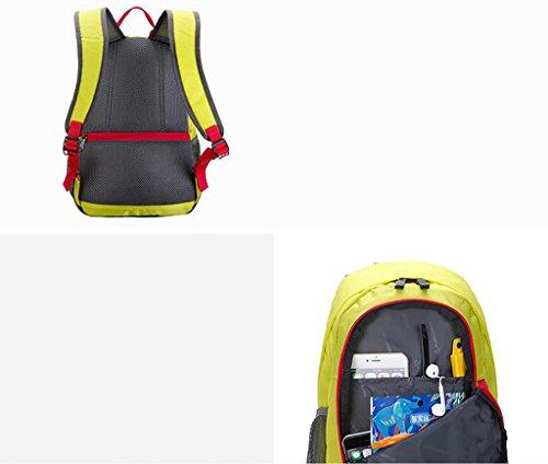 HWLXBB Borsa per alpinismo all'aperto Uomini e donne 15L Borsa alpinistica multifunzione impermeabile Escursioni alpinismo Zainetto per il tempo libero all'alpinismo zaino ( Colore : B ) C