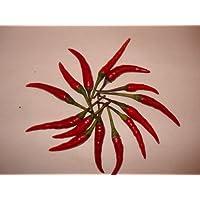 Thai-Chili (Zipfelmützenchili) 20 Samen