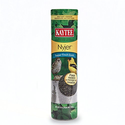 Kaytee Products Super Finch Sock Feeder Nyjer Seed Birds Treats Supplies 25oz -