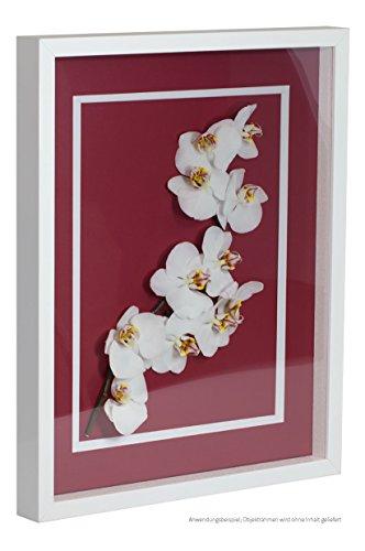 Objektrahmen FrameBox VARIO36 Weiß (matt) 70x100cm zum Einrahmen von Trikots, Blumen, Passepartouts...