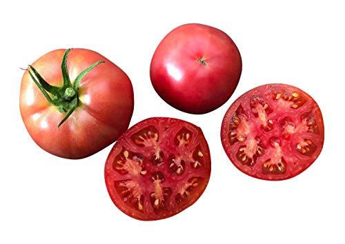 Tomate -Berner Rose- 10 Samen