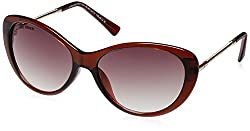 Joe Black Oval Sunglasses (Brown) (JB-560|C3|60)