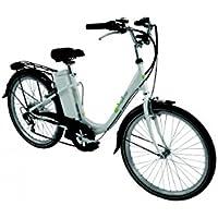 Vélo électrique Wayscral Basy 315 24V