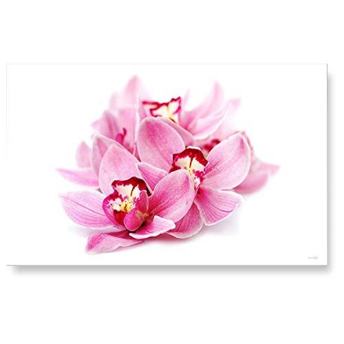 """LANA KK Küchenrückwand - Glasbild\""""Orchideenblüte\"""" Blumen und Natur edler Kunstdruck hinter 6 mm starkem Sicherheitsglas, Bunt, 90 x 60 x 0.6 cm"""