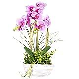 Aufora Artificielle orchidées Vase, 3Stems-Small, Violet, 48