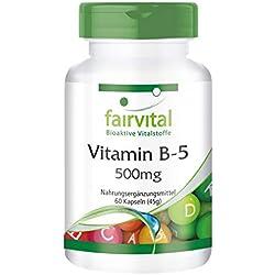 Vitamin B5 500mg - für 2 Monate - VEGAN - HOCHDOSIERT - 60 Kapseln - Pantothensäure