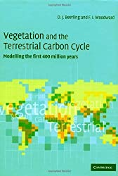 Vegetation and the Terrestrial Carbon Cycle: The First 400 Million Years