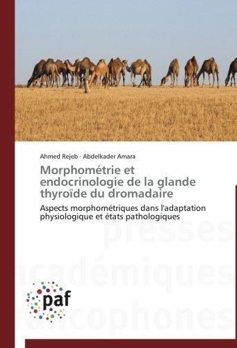 Morphom????trie et endocrinologie de la glande thyro????de du dromadaire: Aspects morphom????triques dans l'adaptation physiologique et ????tats pathologiques (French Edition) by Ahmed Rejeb (2012-07-13)