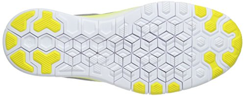 Nike Damen Free 5.0 Tr Fit 5 Laufschuhe Grau (Grey/White/Pure Platinum)