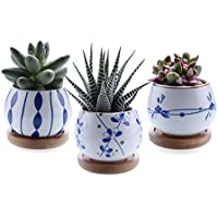 T4U 7cm Cerámico Suculento Maceta Cactus Flor Macetas Envase Plantas con Bandeja de Bambú Juego Completo de 3