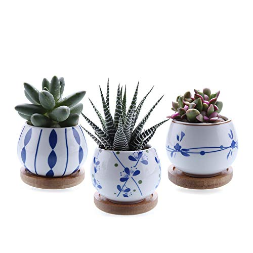 T4U 7cm Japanischer Stil Sukkulenten Töpfchen Mini Keramik Rund mit Untersetzer 3er-Set für Miniaturpflanzen