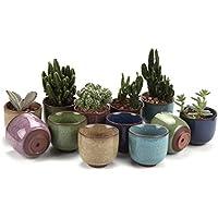 T4U - Vaso in ceramica da 6,5 cm, decorazione ice crack e zisha, adatto per piante succulente Raised Shape