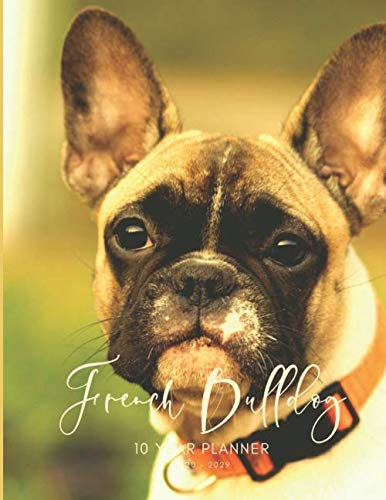 2020-2029 10 Ten Year Planner Monthly Calendar French Bulldog Goals Agenda Schedule Organizer: 120 Months Calendar; Appointment Diary Journal With ... Notes, Julian Dates & Inspirational Quotes -