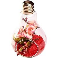 Laat transparente vaso de cristal colgante forma de embudo para plantas flores decoración de jardín casa