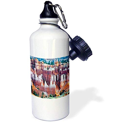 qidushop Utah Hoodoo Formations In Bryce Canyon National Park Natural Sports Wasserflasche Edelstahl Isolierbecher Cup Biken Camping 535 ml