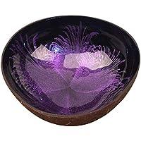 contenedor de coco natural violeta a la venta