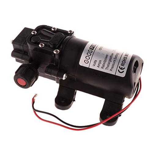 F Fityle 3.5L/min Wasserpumpe Selbstansaugende Pumpe Ho… | 00694989948813