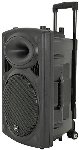 QTX QR12PA Mobile PA-System 200W PA-System (30,48cm (12 Zoll) Box, Netz- & Akku-Betrieb, 2 x Mic In) (Akku-pa-system Portable)